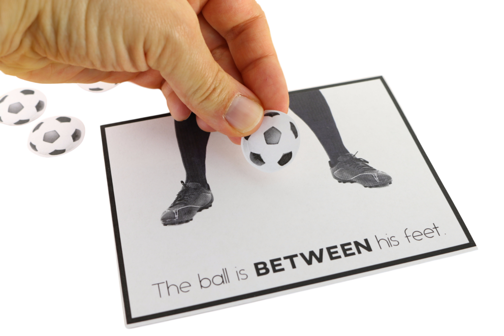 Prepositions Task Cards and Adapted Book